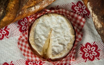 A French cheeseboard for Christmas