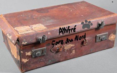 Les Aventures du chien Allifré (1)