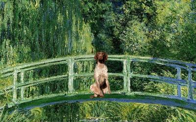 Les Aventures du chien Allifré (3) Monet